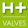 H+VALVES – Chessy (69)