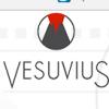 SERT-METAL Groupe VESUVIUS – Lyon (69)